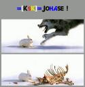 Johase