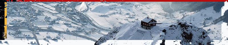 banner adl.jpg