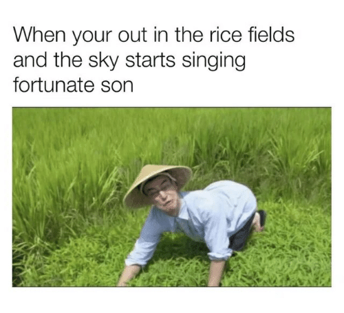 when-your-out-in-the-rice-fields-and-the-sky-39298214.png.1974ff0191b491923dc241648c94034d.png